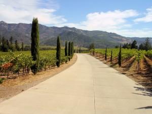 DSC20197,_Castello_di_Amorosa_Winery,_Napa_Valley,_California,_USA