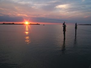 Chesapeake Bay
